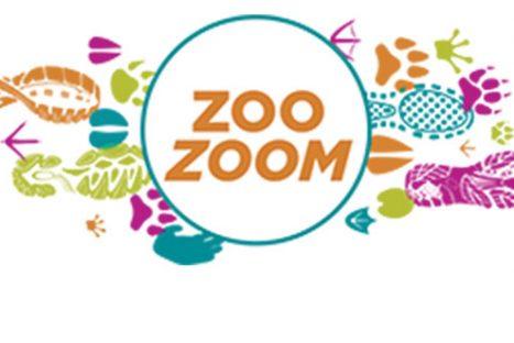Sacramento ZooZoom