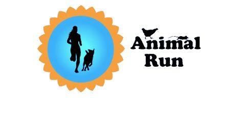 Animal Run